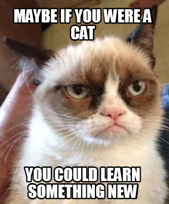 Grumpy Cat Learning
