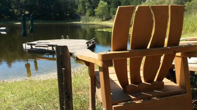 The chair by the pond at OEAC