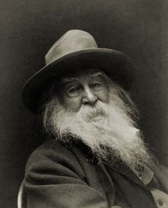 Poet Walt Whitman, photographed by George C. Cox (1851–1902) [Public domain, via Wikimedia Commons]