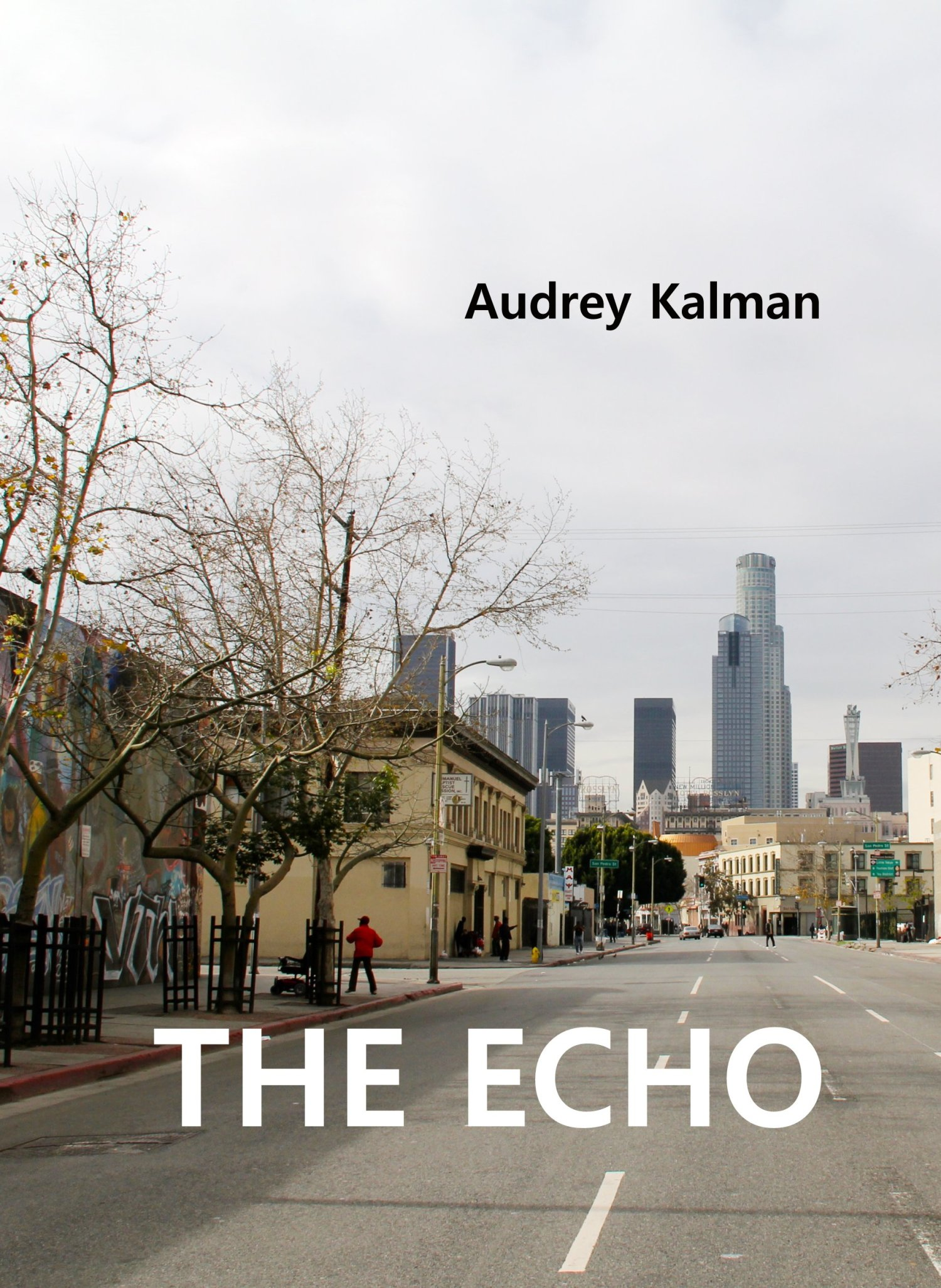 the echo cover 4